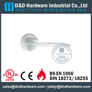 Stainless Steel 304 Casting Lever Handle on Rose for Exterior Doors -DDSH008